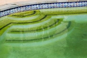 Dávkujete do bazénu správnou chemii, ale čistá voda stále nikde?